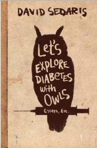 Let's Explore Owls With Diabetes book cover